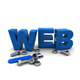 Web Application developer